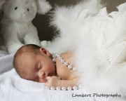 Bassinet newborn photo