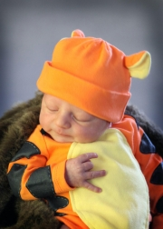 Baby in tiger outfit