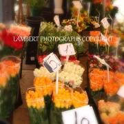 Euro flower market